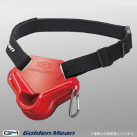 GOLDEN MEAN Pad Mini  Red