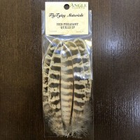 ANGLE Fly Tying Materials Hen Pheasant Quills 2P